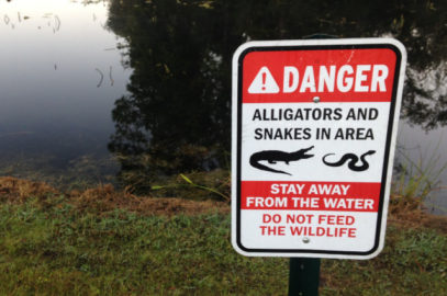 Alligator warning sign by Florida pond