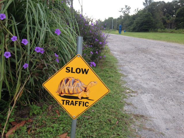 Slow sign at Riverboat in Florida