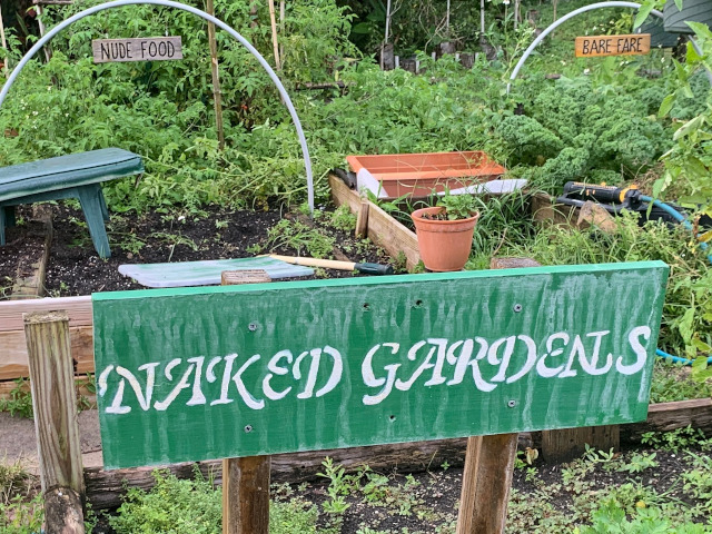 Naked gardening signs Sunnier Palms